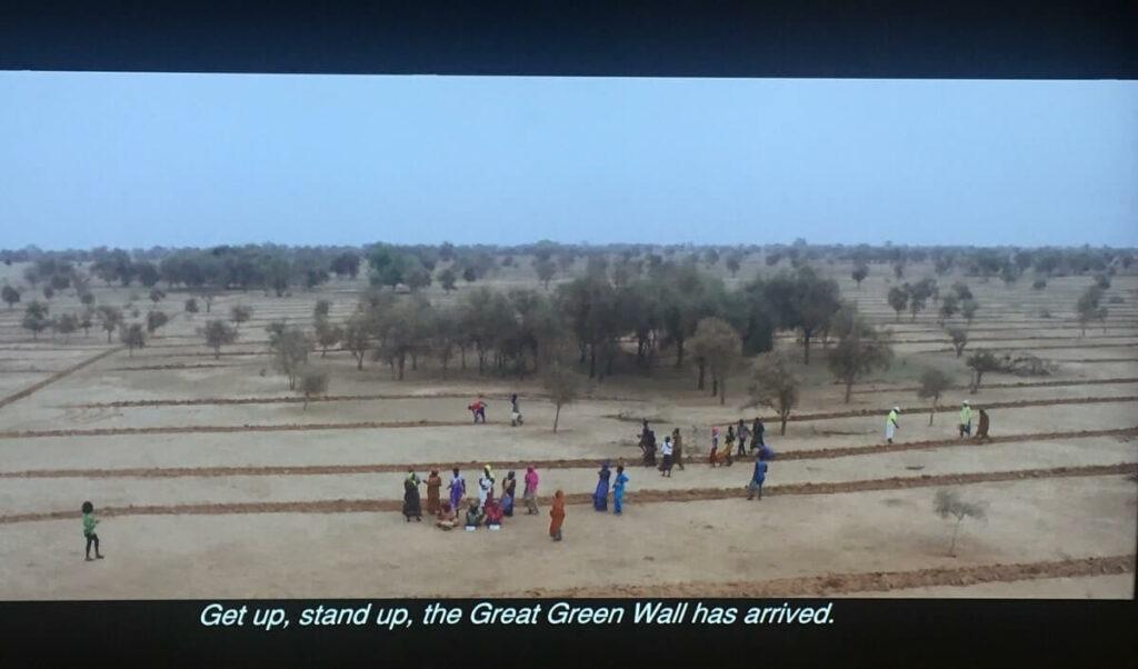 """Aufnahme aus dem Dokumentarfilm """"The Great Green Wall"""". Man sieht eine wüstengeprägte Landschaft mit einigen Bäumen und Menschen."""